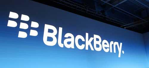 blackberry-fairfax-500x228