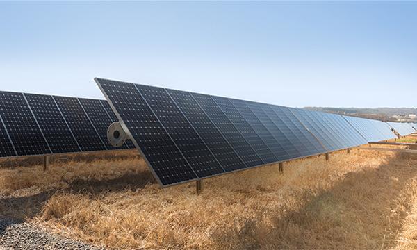 apple-affirme-travailler-a-energie-nette-zero-et-avec-des-produits-verts-dans-le-rapport-sur-la-responsabilite-environnementale