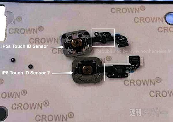 capteur-touch-id-pour-iphone-6-apple