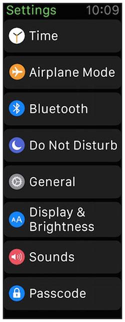 ios-8-2-beta-5-icone-apple-watch_2