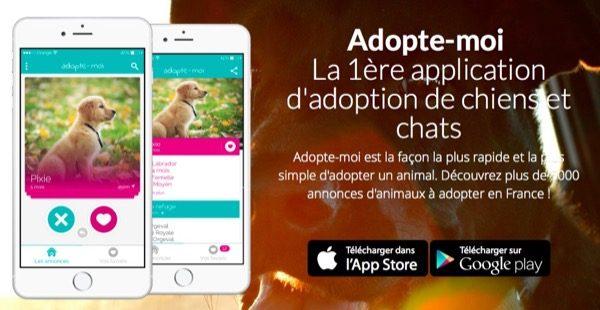 adopte-moi-lapp-de-lamour-des-chats-et-chiens_2