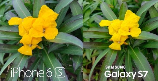 galaxy-s7-vs-iphone-6s-a-meilleur-appareil-photo