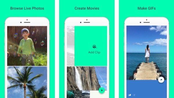 motion-stills-nouvelle-app-de-google-transformer-vos-live-photos-gif