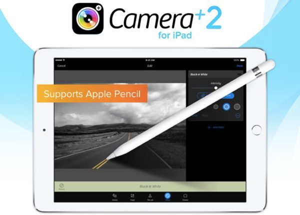 Camera-2.0-for-iPad-selective-brushing-teaser-593x424