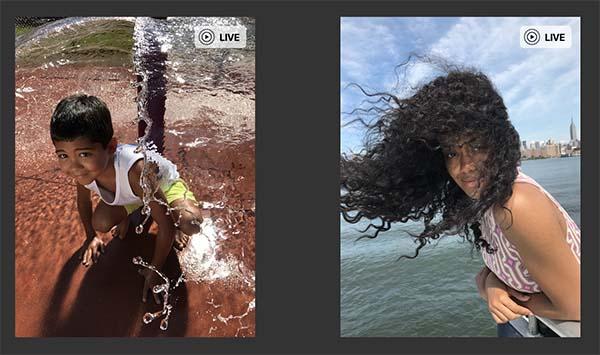 Apple lance son API web pour la fonction Live Photos
