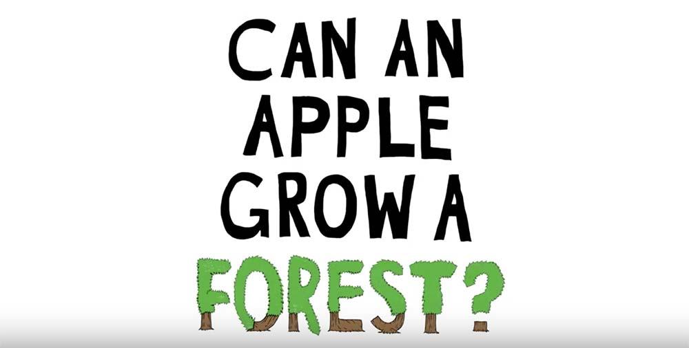 Apple annonce ses plans pour la protection des forêts [Vidéo]