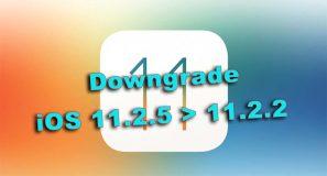Comment downgrader d'iOS 11.2.5 vers 11.2.2 ? [Tutoriel]