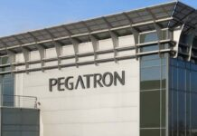 Pegatron Apple N20