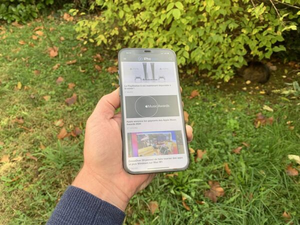 Ecran Iphone 12 Pro Max 2