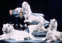 podcast siegfried roy