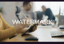 hitpaw watermark