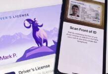 permis de conduire wallet iphone
